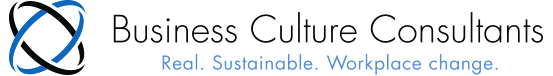 Business Culture Consultants