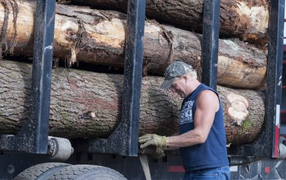 Vermont's Forest Products Industry: In Transition and Hopeful for the Future