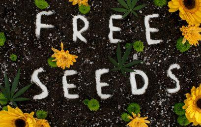 4/20 Week Seed Giveaway