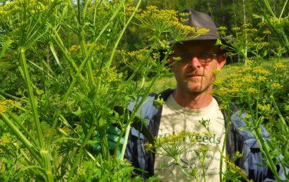 Invasive Species Workshop, Non-chemical Methods