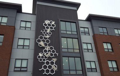 New Public Art Sculpture in South Burlington