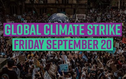 Support the Global Climate Strike