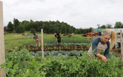 STERLING COLLEGE FARM CREATES FOOD HUB TO HELP SMALL GROWERS AND REDUCE FOOD INSECURITY