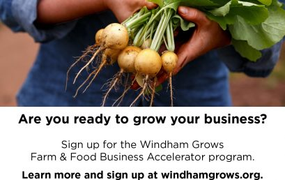 Windham Grows Farm & Food Business Accelerator Accepting Applications for BIPOC-focused 2020-2021 Cohort