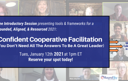 Webinar: Confident Cooperative Facilitation (You Don't Need All The Answers To Be A Great Leader)